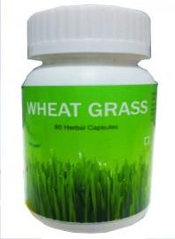 Hawaiian herbal wheat grass capsule