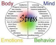 Life Management & Meditation
