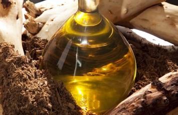 SANDAL WOOD OIL